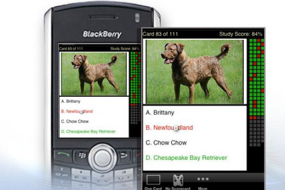 15 nifty BlackBerry apps