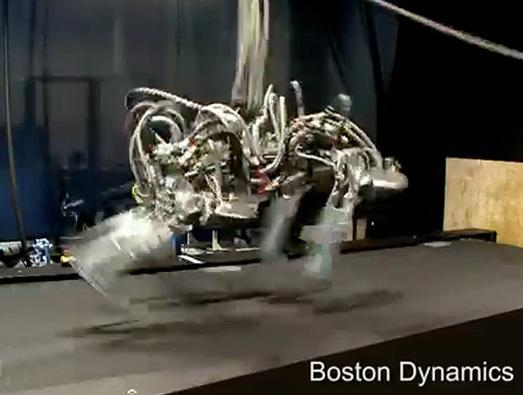 In Pictures: Beastly robotic animals