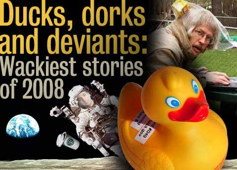 Ducks, dorks and deviants: Wackiest stories of 2008
