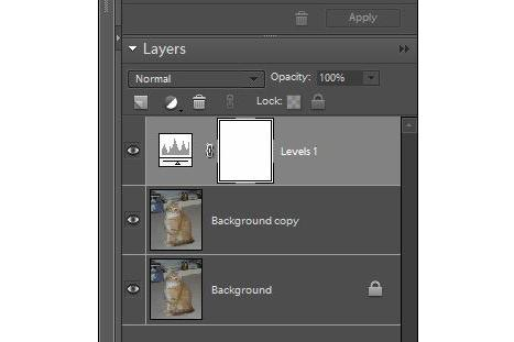 Photo editing basics: working with layers