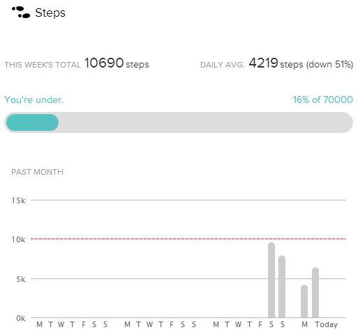 The Fitbit service calculates and displays your daily activity breakdown.