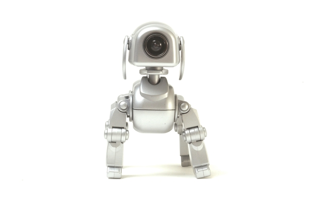Anyware Corporation RoboDog Webcam