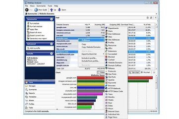 Webspy Analyzer Standard 4.3